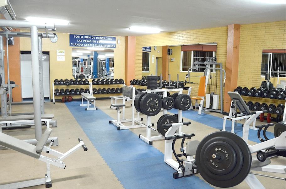 Oferta gimnasio gimnasio atlas sevilla gymforless for Gimnasio jaen