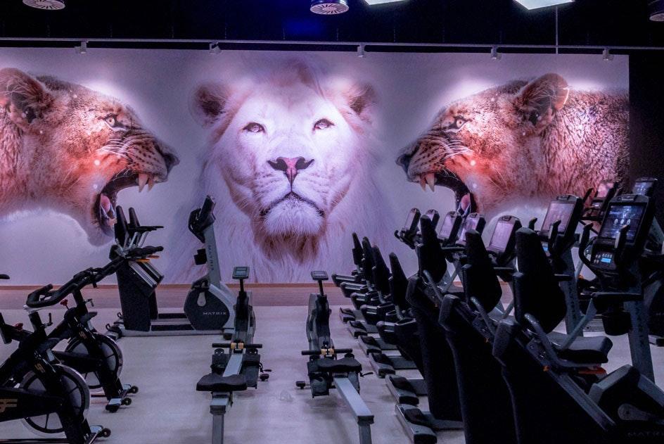 Foto 0 Oferta Nine Fitness Pinto Pinto {2} - GymForLess