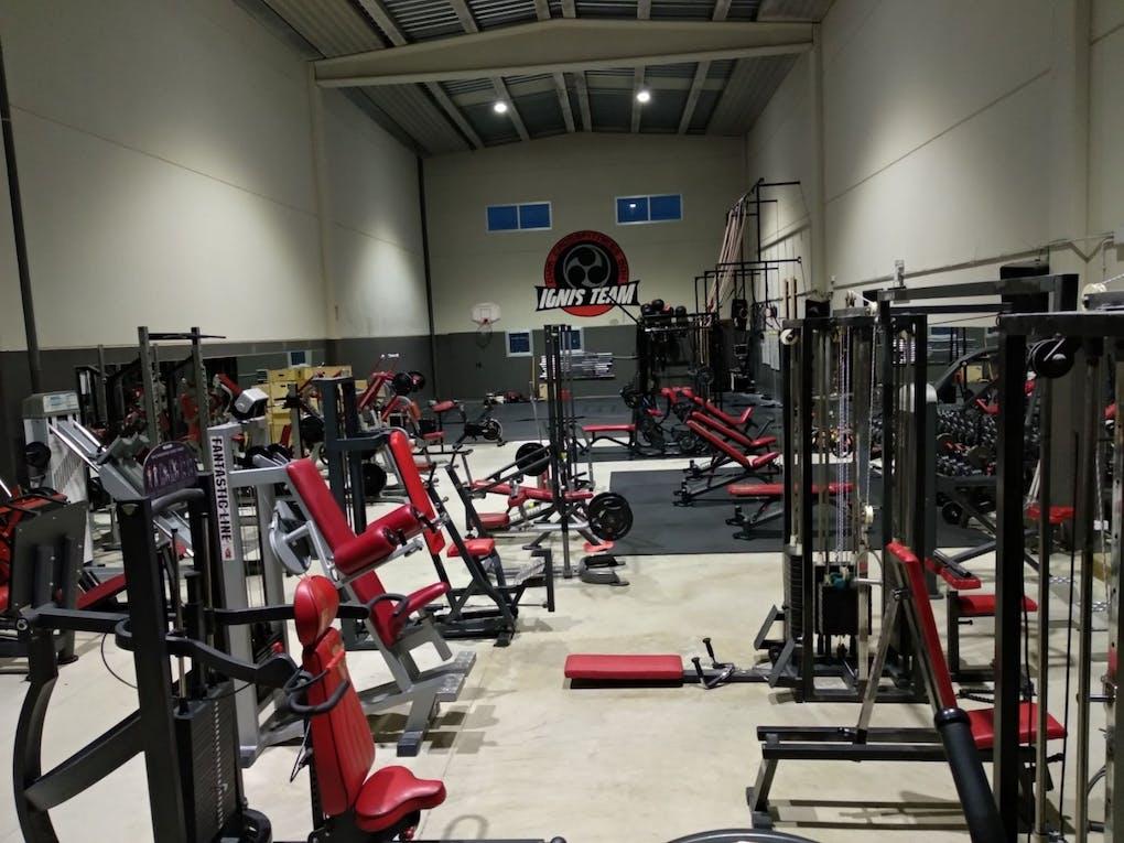 Ignis Gym