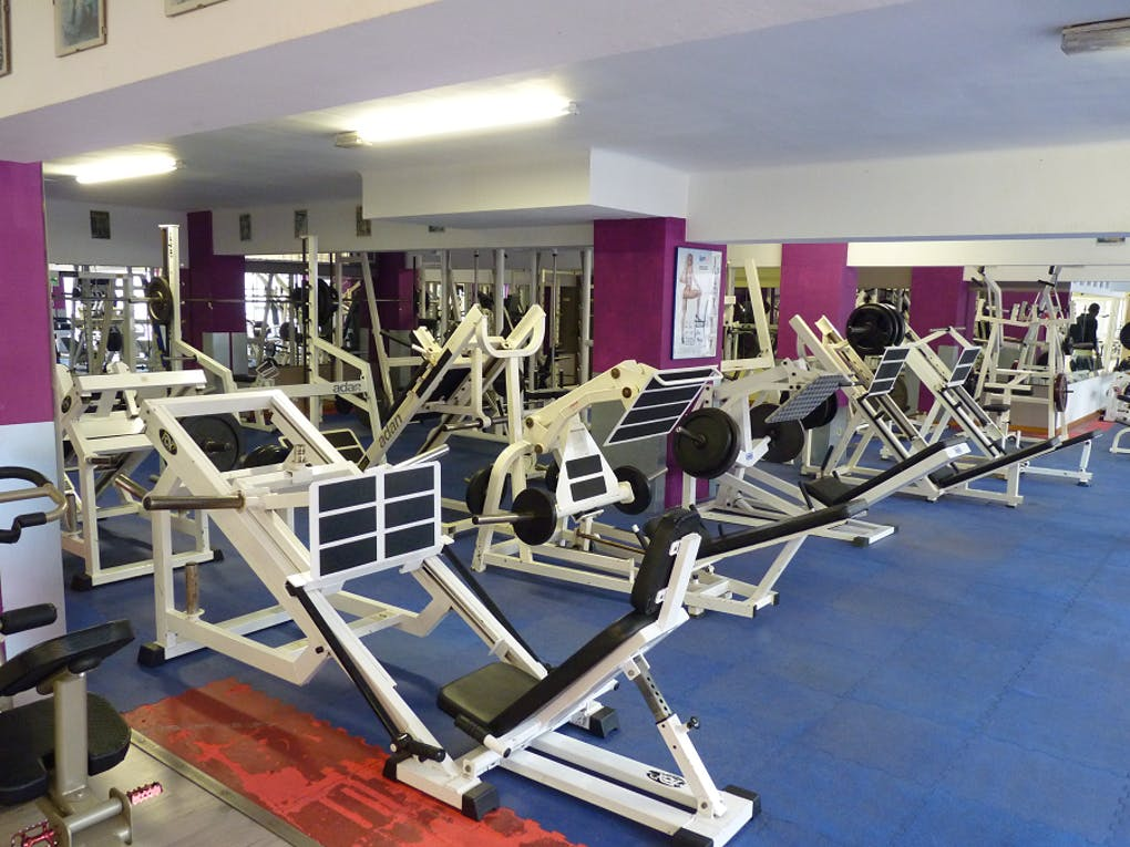 Gym Professional Fitness