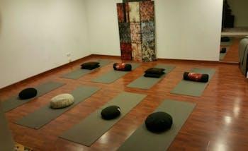 Satchidananda - Ananda Yoga