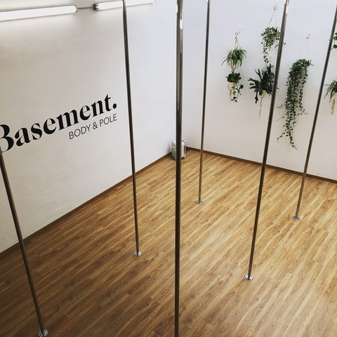 Basement Body & Pole