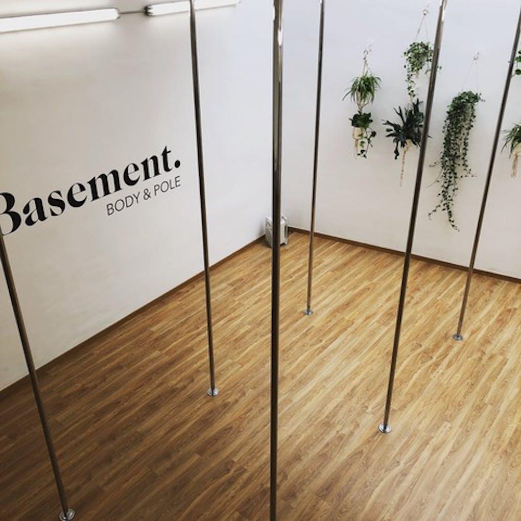 Basement Body & Pole