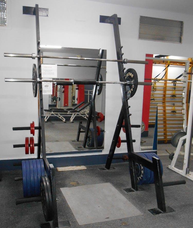 The Muscle III