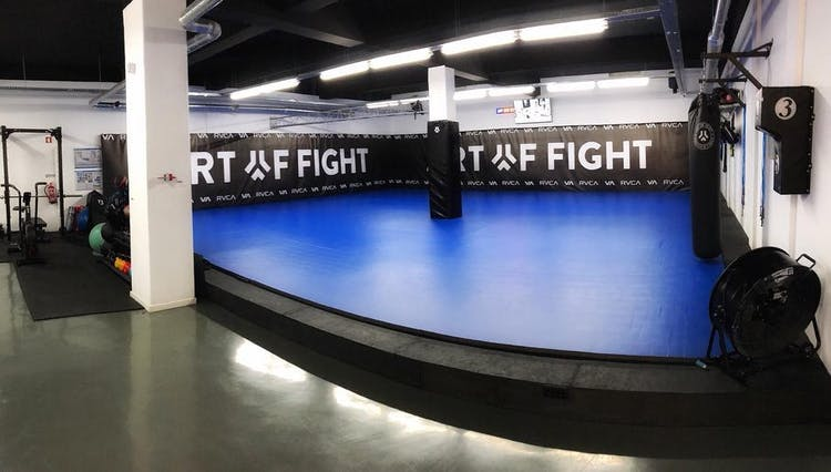 Art Of Fight