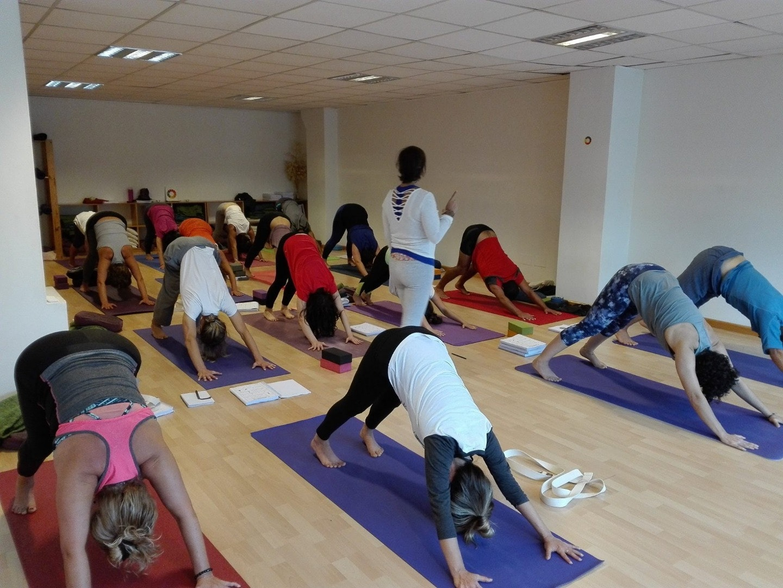 Centro de Yoga Integral Mahashakti