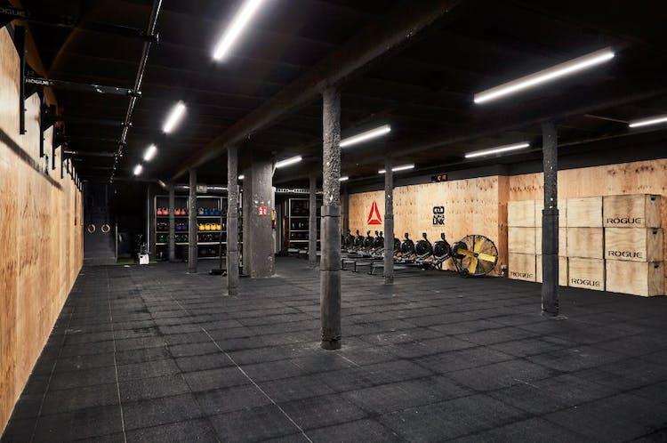 Alpha Link CrossFit