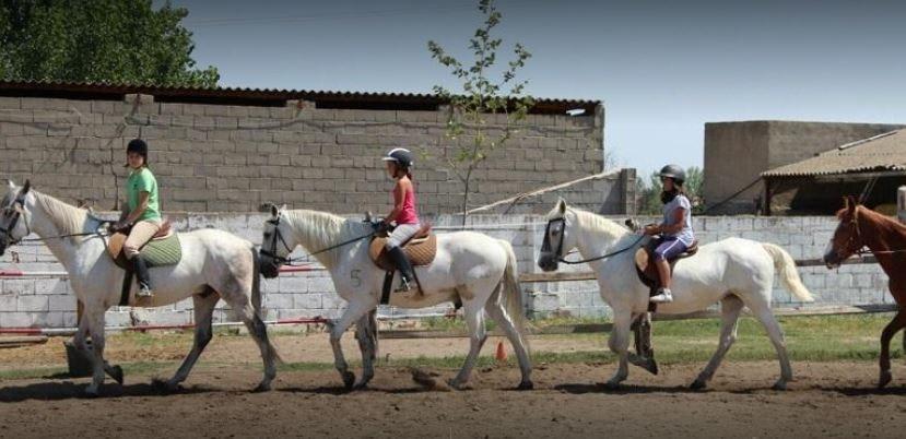 Foto 0 Oferta La Escuela de Henry Madrid {2} - GymForLess