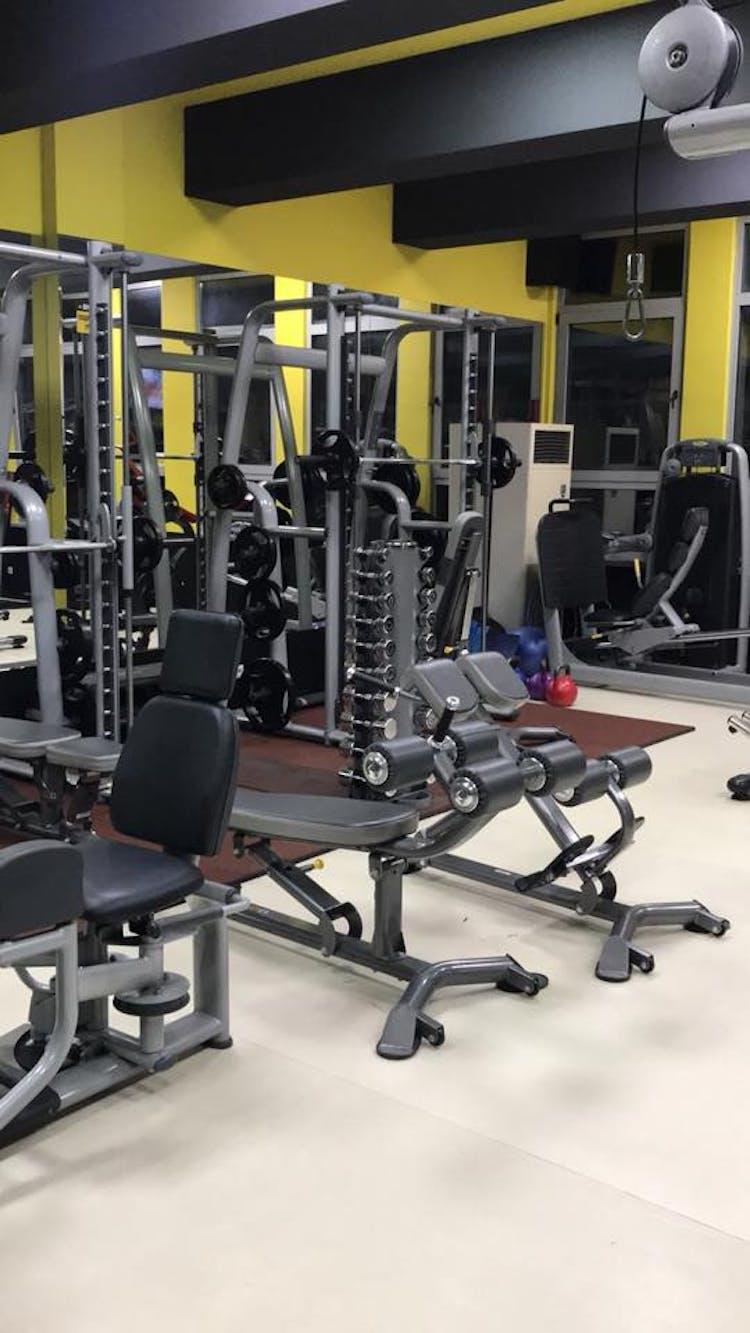 Mega Gym Fitness