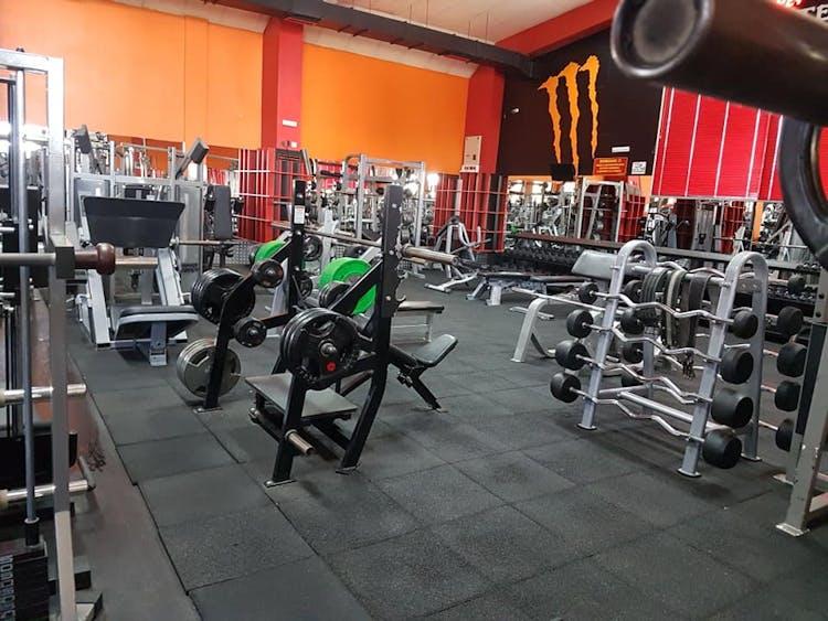 Monster Fitness Kamenec
