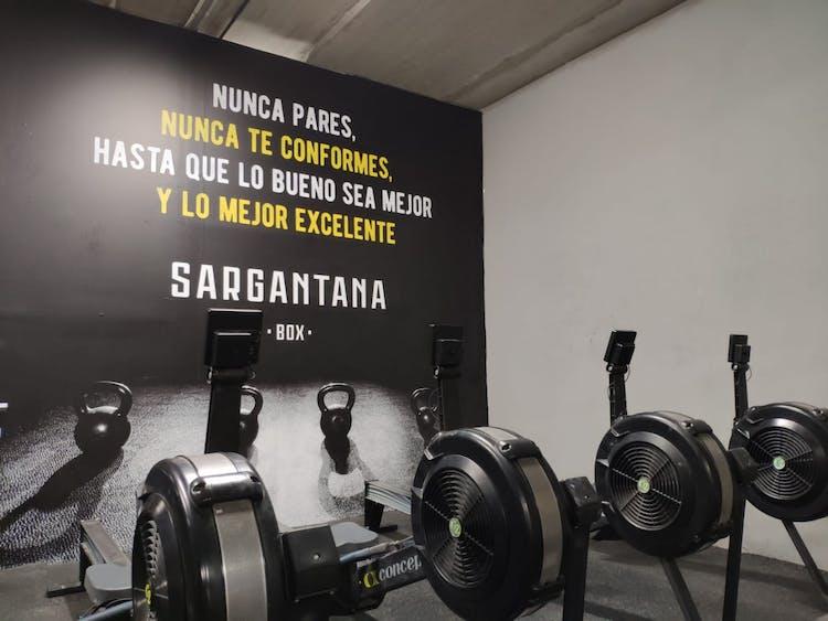 Sargantana Box Boadilla - Clases Online