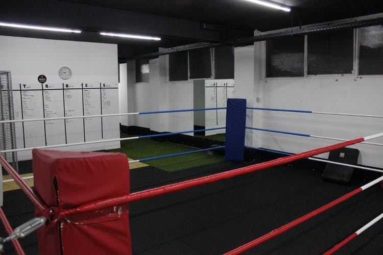 Fox Gym