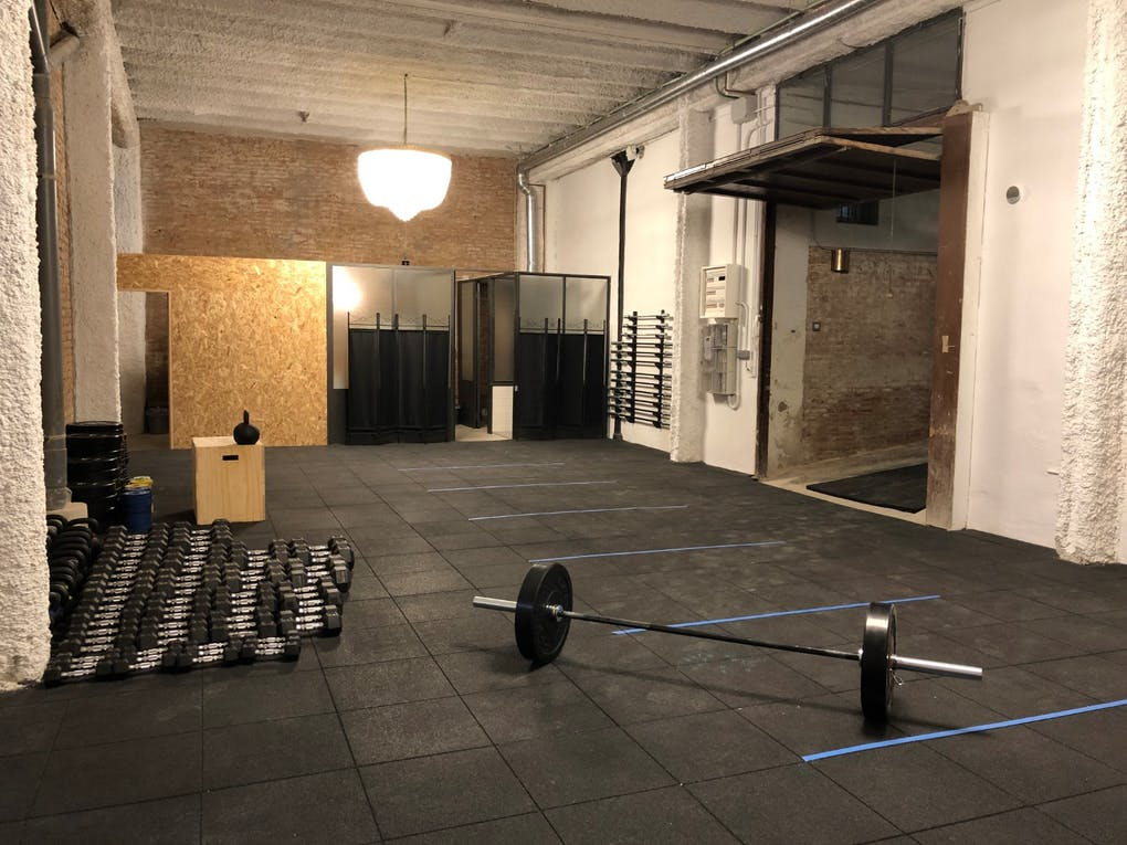 Box Fit Dogs Barcelona