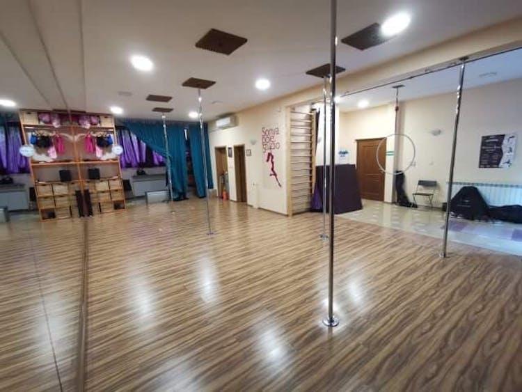 Sonya pole dance studio