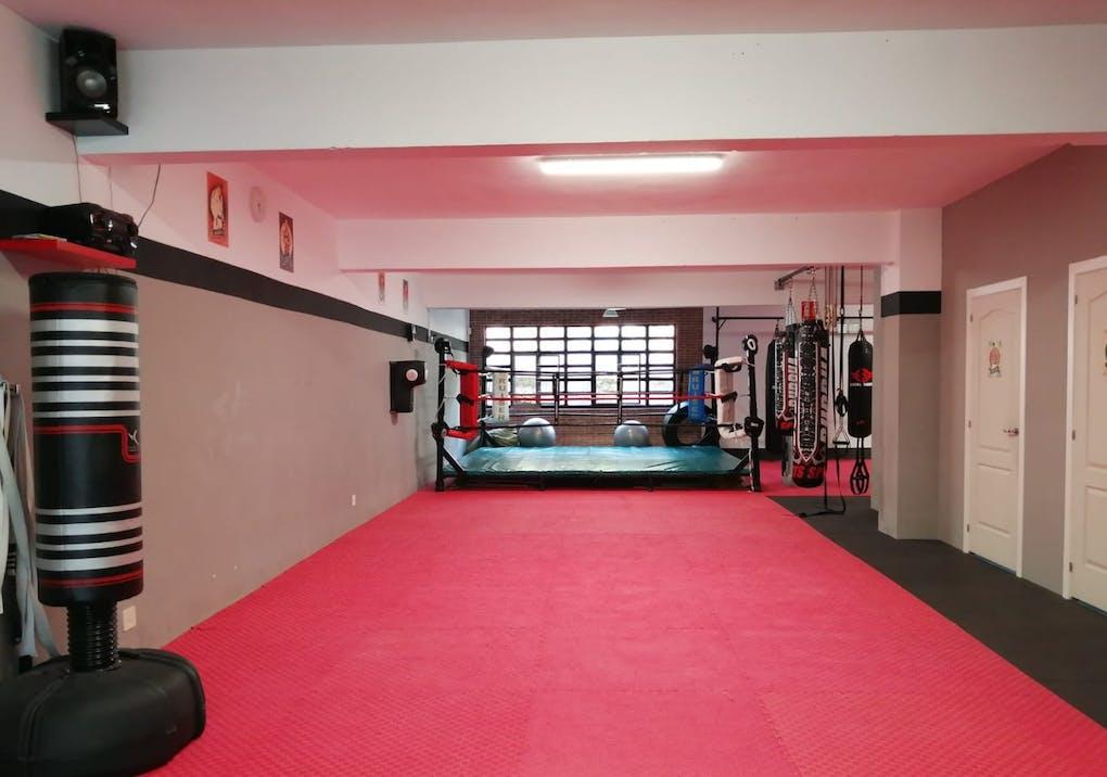 SA Fight Company
