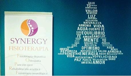 Synergy fisioterapia