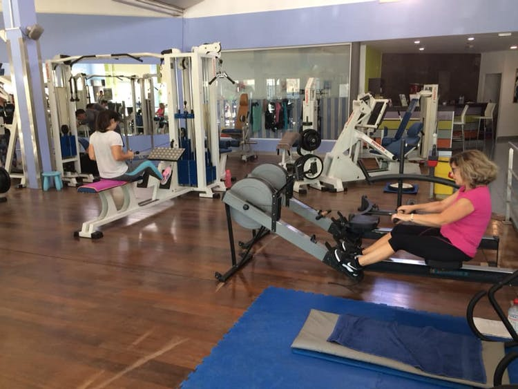 Musculos & Companhia