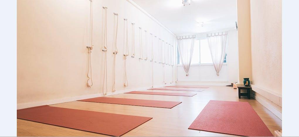 Bodhi Yoga y Terapias Naturales