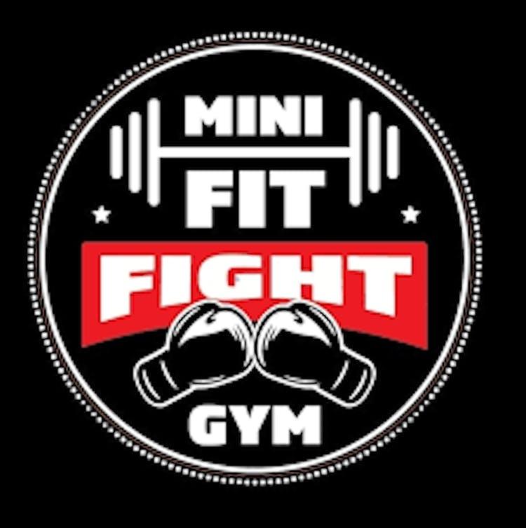 Mini Fit Fight Gym