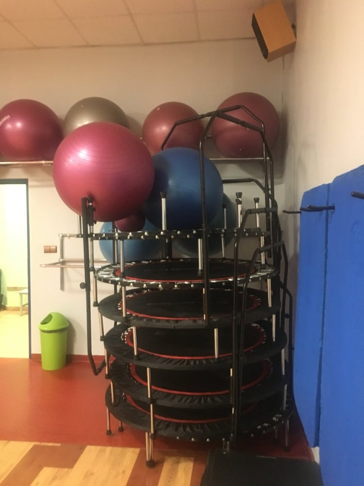 Wild Power Gym