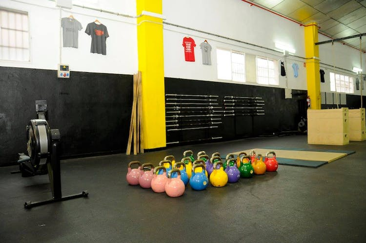 M5 Health and Fitness - Clases Online
