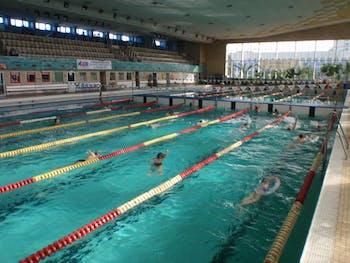 """Szkoła Pływania """"Delfi"""" Oświęcim"""