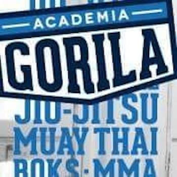 Academia Gorila Brzesko
