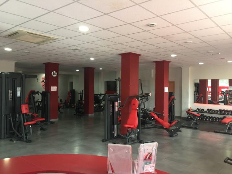 Gym Pro Fitness