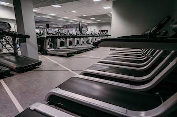 Extreme Fitness Szafera