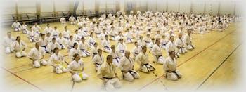 Mińsko- Mazowiecki Klub Karate Kyokushinkai