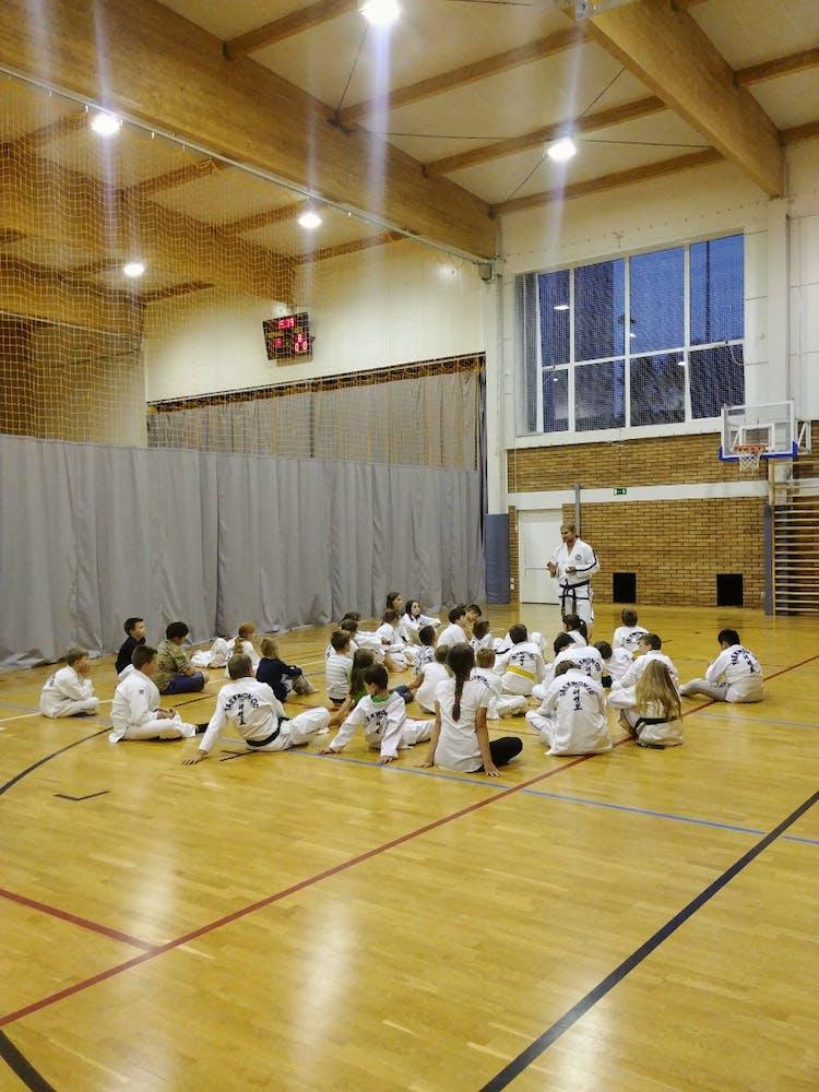 Akademia Sztuk Walki Taekwon-do Mistów