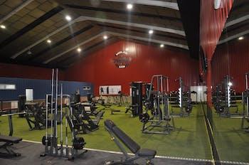 Molar Gym